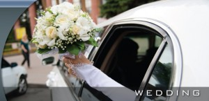 Denver Wedding Limo(1)