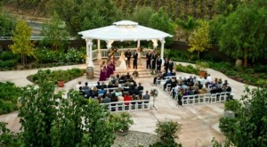 Wilson-Creek-Winery-Wedding-San-Diego-CA-11_Fotor_main.1395088977